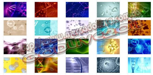 Backgrounds3_39c88c.jpg